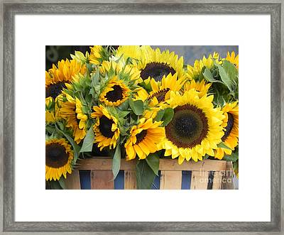 Basket Of Sunflowers Framed Print by Chrisann Ellis