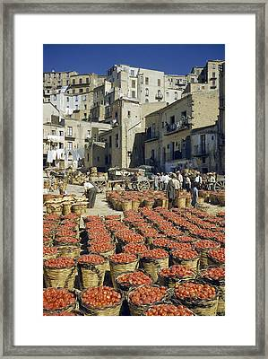 Baskets Filled With Tomatoes Stand Framed Print by Luis Marden