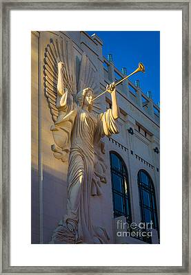 Bass Angel Framed Print by Inge Johnsson