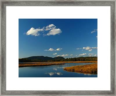 Bass Harbor Marsh Framed Print