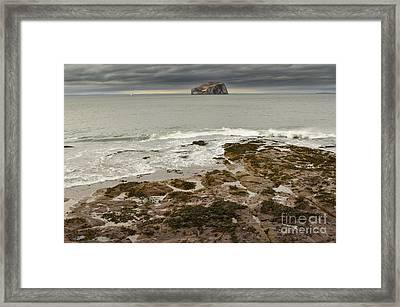 Bass Rock Framed Print by Nichola Denny