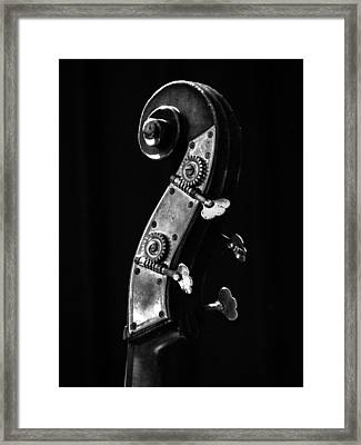 Bass Violin Framed Print