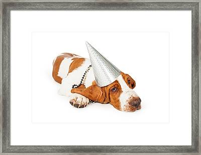 Basset Hound Dog Wearing Silver Party Hat Framed Print