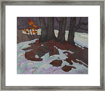 Basswood Copse Framed Print by Phil Chadwick