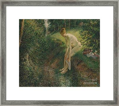 Bather In The Woods, 1895 Framed Print by Camille Pissarro