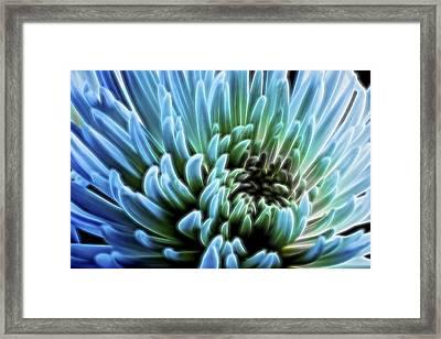 Bathing In Blue II Framed Print by Jon Glaser