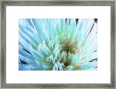 Bathing In Blue IIi Framed Print by Jon Glaser