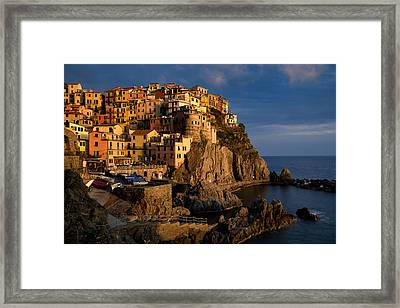 Bathing In The Afternoon Sun Framed Print by Blaz Gvajc