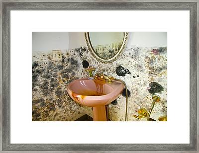 Bathroom Mold Framed Print by William Furguson