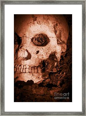 Battle Skull Framed Print by Jorgo Photography - Wall Art Gallery