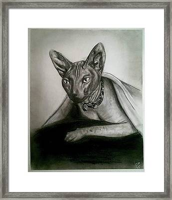 Battman Framed Print