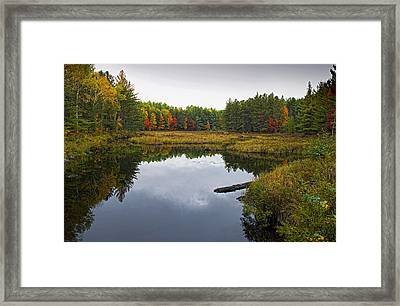 Baxter State Park Small Pond In Autumn Maine Framed Print by Brendan Reals