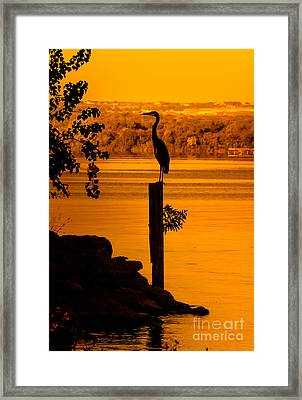 Bay At Sunrise - Heron Framed Print