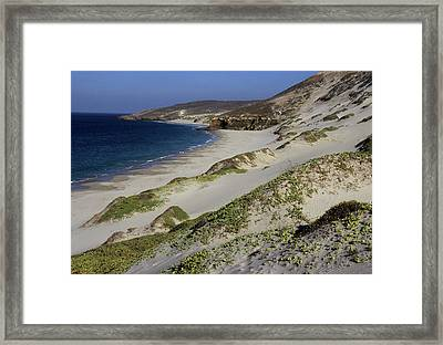 Bay Beach And Sand Dunes Framed Print
