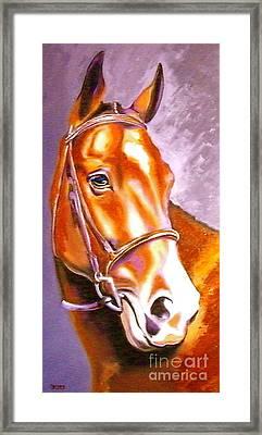 Bay Champion Framed Print by Susan A Becker