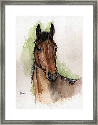 Bay Horse Portrait Watercolor Painting 02 2013 Framed Print by Angel  Tarantella