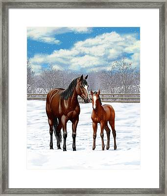Bay Mare And Foal In Winter Framed Print by Crista Forest