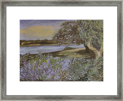 Bay View Lavender And Sage Framed Print