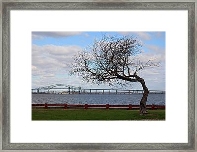 Framed Print featuring the photograph Bayonne by Steven Richman