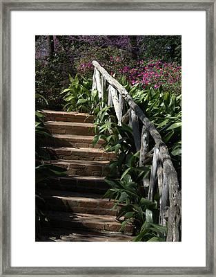 Bayou Bend Gardens Framed Print