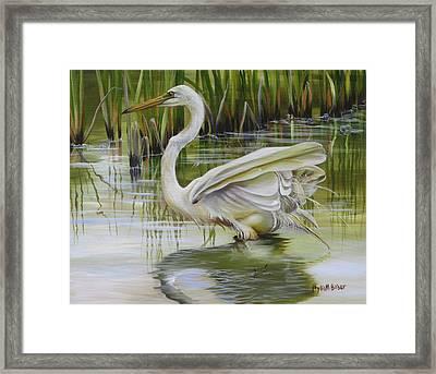 Bayou Caddy Great Egret Framed Print by Phyllis Beiser