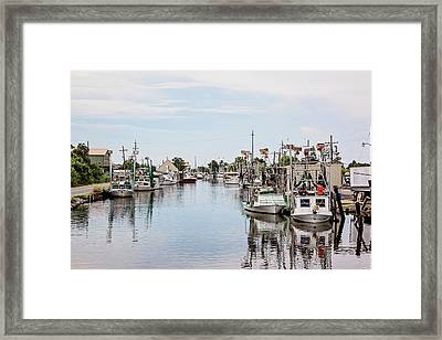 Bayou La Loutre Framed Print
