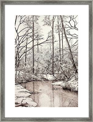 Bayou Lacombe At Peace Grove Ll Framed Print by Colleen Marquis