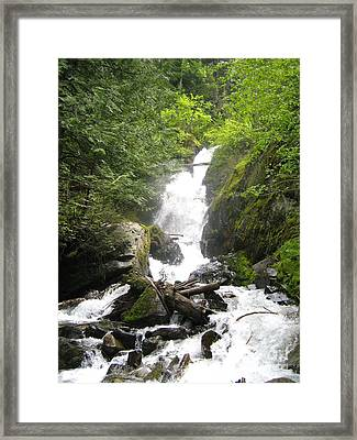 Bc Mountain Stream Framed Print by Reb Frost