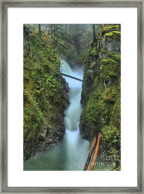 Bc Rainforest Waterfall Framed Print by Adam Jewell