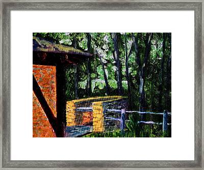 Bcsp 17 Framed Print by Stan Hamilton