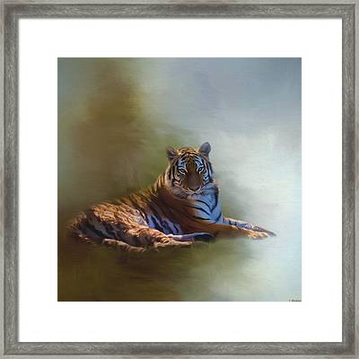 Be Calm In Your Heart - Tiger Art Framed Print