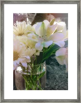 Be Gentle Framed Print by JAMART Photography