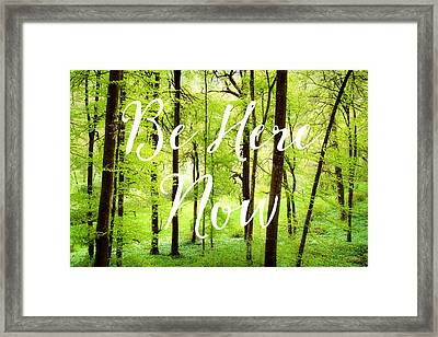 Be Here Now Green Forest In Spring Framed Print by Matthias Hauser