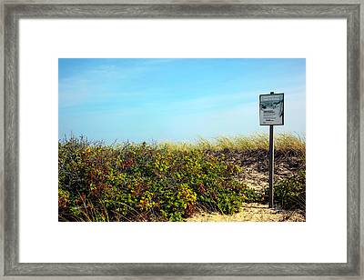 Be Kind To The Dune Plants Framed Print