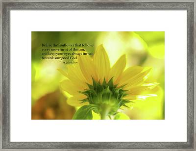 Be Like The Sunflower Framed Print