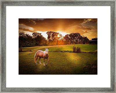 Be My Friend Framed Print