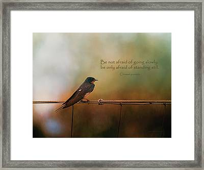 Be Not Afraid Of Going Slowly Framed Print by Maria Angelica Maira