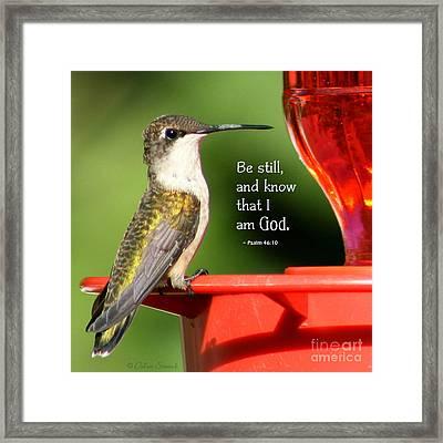 Be Still And Know Framed Print by Debra Straub