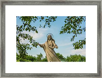 Be Still Framed Print by Pamela Williams