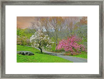 Framed Print featuring the photograph Be True To Yourself by Diana Angstadt