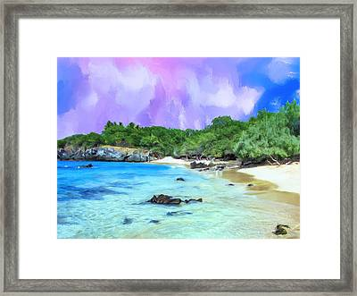 Beach 69 Big Island Framed Print