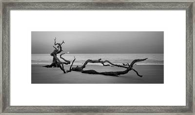 Beach Art Cropped In Black An White Framed Print