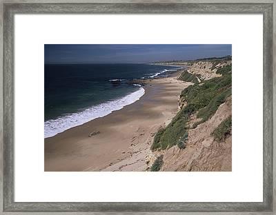 Beach Beachcombers And Wildflowers Framed Print