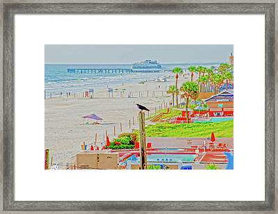Beach Bird On A Pole Framed Print