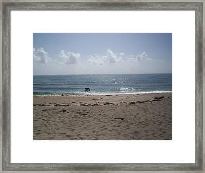 Beach Bobbiong Framed Print by Karen Thompson