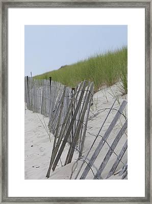 Beach Border Framed Print by Patricia M Shanahan