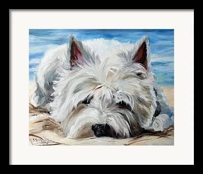 Dog Beach Card Framed Prints