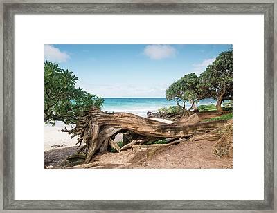 Beach Camping Framed Print