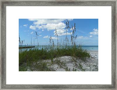 Framed Print featuring the photograph Beach by Carol  Bradley
