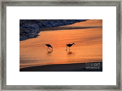 Beach Couple Framed Print by David Lee Thompson